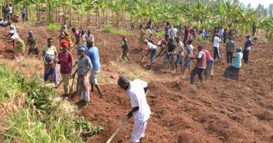 METEO-Rwanda irateguza abaturage  ko imvura y'itumba  izagwa mu mezi 3
